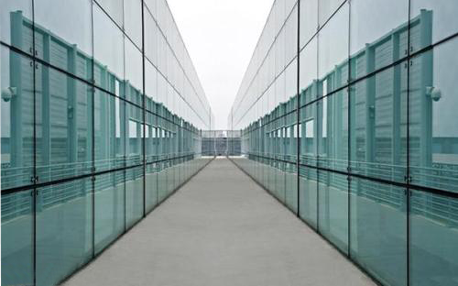 Reflection Glass Curtainwall